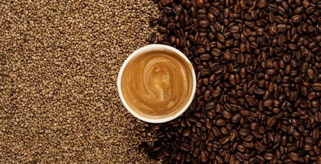 Hemp Seed Coffee Benefits